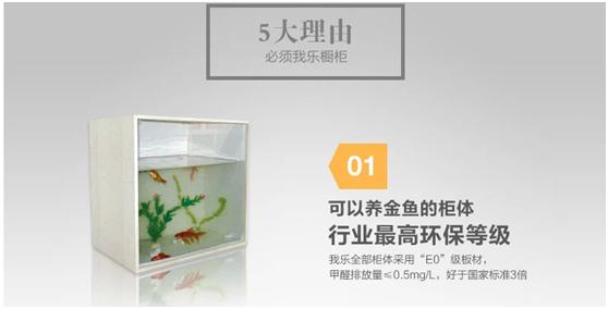 选能养金鱼的整体橱柜打造健康环保生活